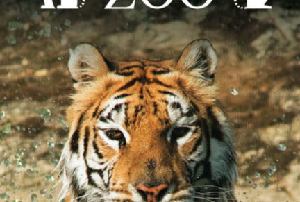 Isle of Wight Zoo, Sandown – February Half-Term Zoo Entry for All – normally up to £11.40 deal £5.00