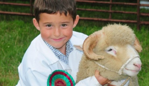 RIWAS, Northwood – The Royal Isle of Wight County Show Family Package Tickets and Exclusive VIP Package – normally up to £57.00 deal price from £15.95