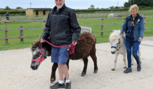 Isle of Wight Donkey Sanctuary, Wroxall – Adult & Child Shetland Pony Trek with Meal – normally up to £18.95 deal price £9.95
