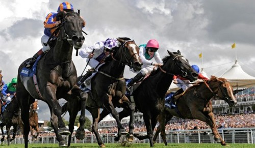 Glorious Goodwood Day Trip direct from the Island including Coach Travel, Ferry Crossings & Entrance Ticket – deal price £48.00