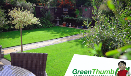 Our Best Ever Offers at GreenThumb Lawn Treatment – Promotional Feature
