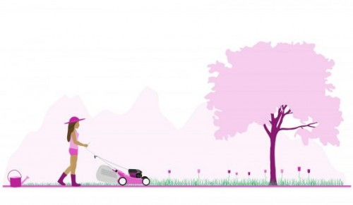 Claire's Gardening Services, Island-Wide – Choice of Garden Maintenance Services – normally up to £160.00 deal price from £25.00